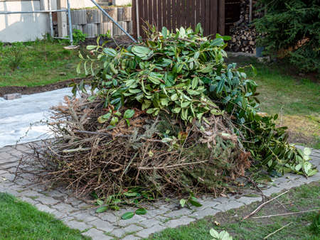 Pile of garden waste to be burned in the garden