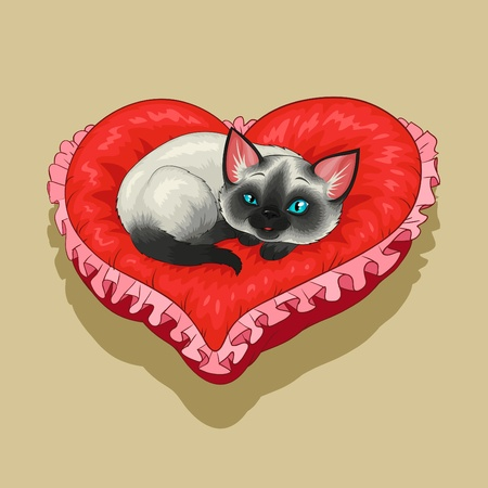 Siam kitty is lying on a red heart shaped pillow.