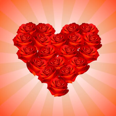 Set of roses forming a heart shape as a gift of Valentines Day
