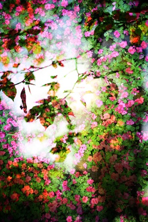 floral objects: Double exposure of floral objects, day light Stock Photo