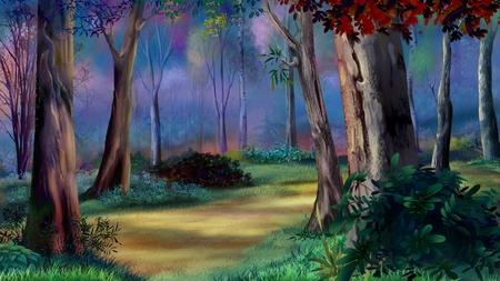 夕日の魔法の森 写真素材