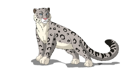snow leopard: Snow Leopard isolated