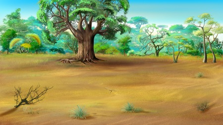 African Savannah in a summer day with big baobab on background.