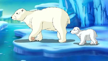 arctic: Polar Bear and teddy-bear in Arctic Stock Photo