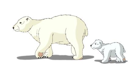 digital painting: Digital painting of the Polar Bear
