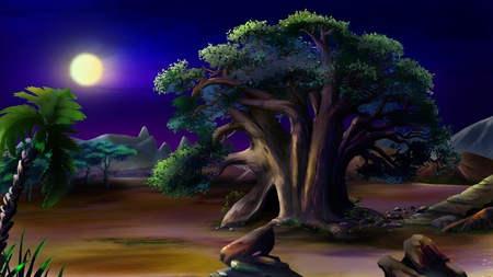 Digital painting of the African baobab in a summer night.