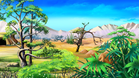 digital painting: Digital painting of the African native plants in a summer day. Stock Photo