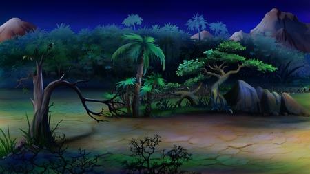 bush: Digital painting of the African bush in a summer night.