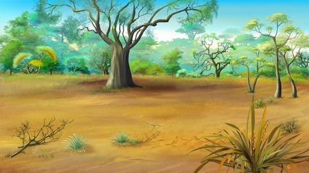 solitary: Digital painting of Large Solitary Tree in the Meadow Stock Photo