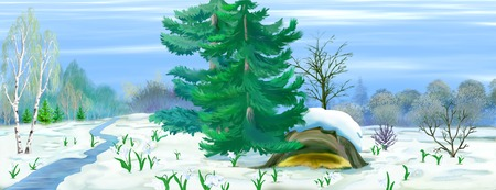 early spring: Digital painting of the Spring snowdrop flowers coming out from snow in a spring forest. Panorama