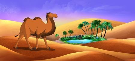 running camel: Bactrian Camel in Desert Oasis. Digital painting  full color illustration.