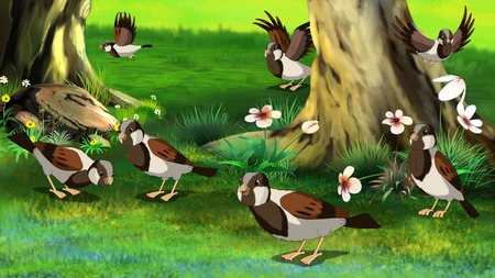 sparrows: Flock of Sparrows Feeding in the Forest.Digital painting full color illustration.