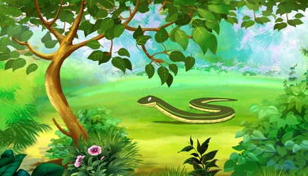 slow: Slow Worm in a Forest. Digital painting  full color cartoon style illustration. Stock Photo