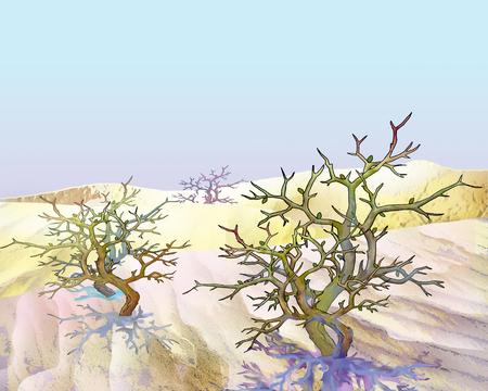 shrub: shrub Saxaul plant (haloxylon) in a sand desert. Cartoon Style Character, Fairy Tale Story.