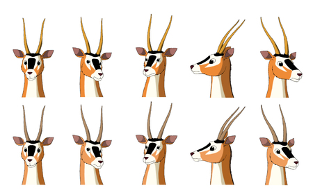 digital painting: Set of African Antelope Gazelle images. Digital painting  full color cartoon style illustration isolated on white background.