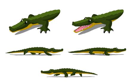 digital painting: Set of Little Crocodile  images. Digital painting  full color cartoon style illustration isolated on white background.