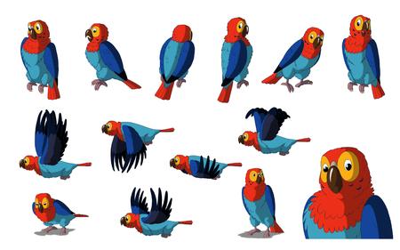guacamaya caricatura: Conjunto de im�genes Macaw. pintura digital a todo color ilustraci�n de estilo de dibujos animados aislado en el fondo blanco. Foto de archivo