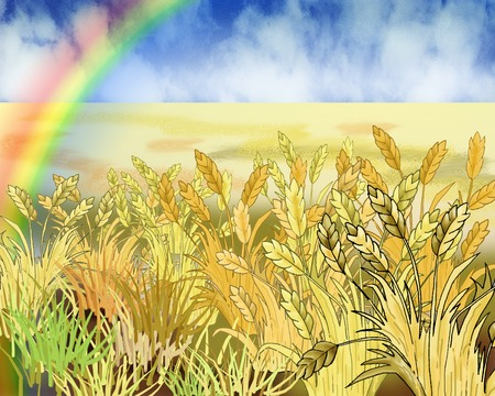 idyll: Rainbow Over Wheat Field in Summer Day. Cartoon Style Character, Fairy Tale Story Background. Stock Photo