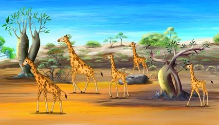 African Giraffes Family Walking at the Savannah. Digital painting  cartoon style full color illustration.