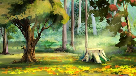 range fruit: Beautiful view of Old Tree Stump in the Autumn Forest. Digital Painting Background, Illustration.