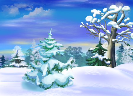 Snow Covered Spruce  in a Winter Forest Clearing. Handmade illustration in a classic cartoon style.