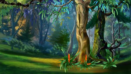 夏の日の林には大きな木。デジタル絵画の背景、スタイルの漫画のキャラクターのイラストです。