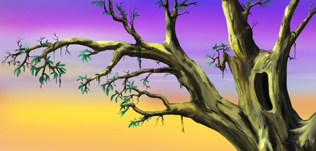 African Tree with Big Hollow in a Sunny Summer day. Digital Painting Background, Illustration in cartoon style character. Stock Photo