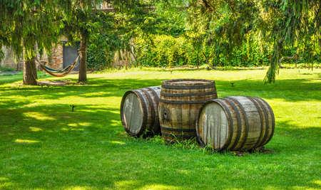 Vesele, Ukraine 07.24.2020. Park in Prince Trubetskoy winery castle on a sunny summer day