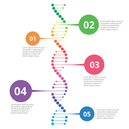 Abstract infographic DNA, can be used for workflow layout, diagram, number options Çizim