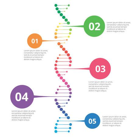 Abstract infographic DNA, kan voor werkschemalay-out, diagram, aantalopties worden gebruikt