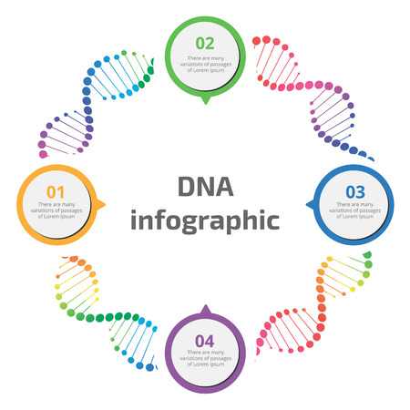 Abstract infographic DNA, can be used for workflow layout, diagram, number options 向量圖像