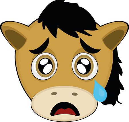 Vector illustration of a cartoon horse's face with a sad expression