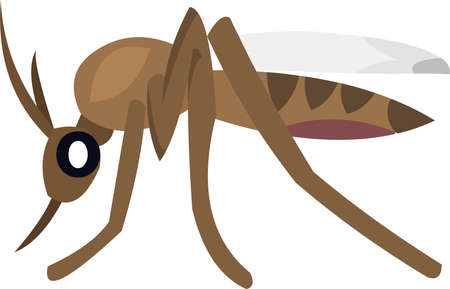 Vector illustration of a mosquito cartoon