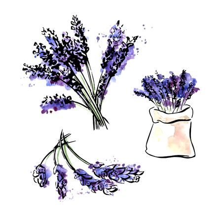 Vector set of hand drawn images of Lavender. Bunch of flowers and lavender bag. Bright colorful elements isolated on white background. Black outline and watercolor stains and drips.