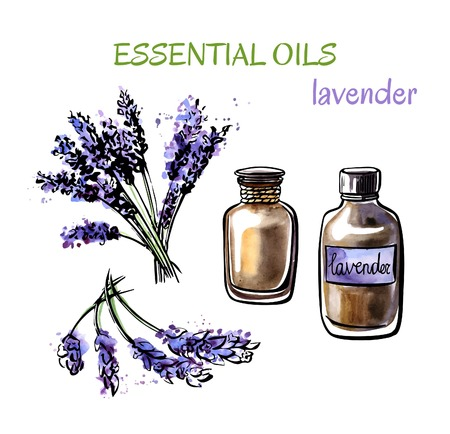 Vector illustration of lavender essential oils. Bunch of flowers, flasks and bottles. Set of hand drawn watercolor objects isolated on white background.