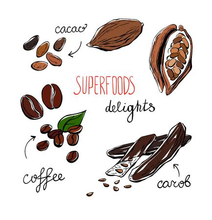 carob: Set of vector doodle illustrations of delicious superfoods. Carob, cacao and coffee beans. Simple hand drawn doodle objects isolated on white background. Collection of sketchy dietary supplements. Illustration