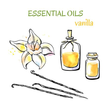 Vector set of doodle objects Aromatherapy Vanilla. Colorful hand drawn objects isolated on white background. Watercolor flower, pods and essential oils flasks and bottles with decorative rope.