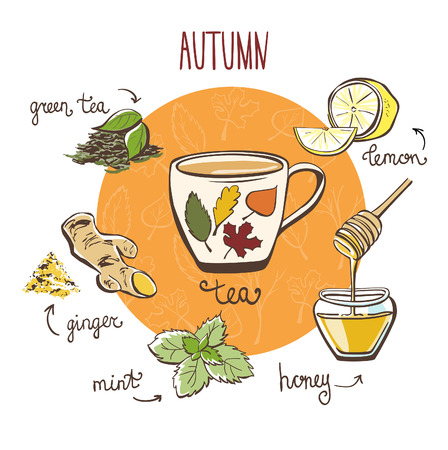 recipe card: Hand drawn vector illustration with hot autumn tea. Doodle cup and ingredients: lemon, ginger, mint, brew and honey. Recipe card with isolated objects and decorative leaves on white background.