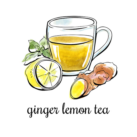 Vector hand drawn illustration with ginger lemon tea. Black outline and bright watercolor stains on the background. Isolated on white. Vectores