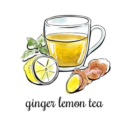 Vector Hand Illustration mit Ingwer Zitrone Tee gezogen. Schwarzer Umriss und helle Aquarell Flecken auf dem Hintergrund. Isoliert auf weiß.