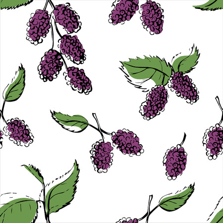 Vector seamless pattern with hand drawn mulberries. Doodle branch of violet berries with green leaves with black outline on white background. Repeating backdrop for your design.