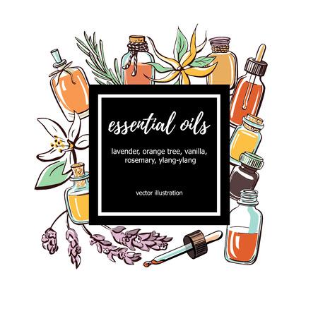 Ilustración vectorial Aceites esenciales. Dibujado a mano doodle botellas, plantas aromáticas y flores y marco cuadrado negro con lugar para el texto. Tarjeta de aromaterapia, póster, diseño de flyer. Ilustración de vector