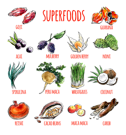 Big set of vector doodle illustrations of the most popular super foods. Collection of hand drawn fruits, plants and berries with black outline and watercolor stains isolated on white background. 版權商用圖片 - 86387447