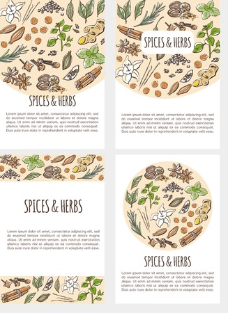 Vector set of flier templates with colorful hand drawn illustrations of different spices and herbs with inscription and place for text. Collection of four vertical card designs. Ilustracja