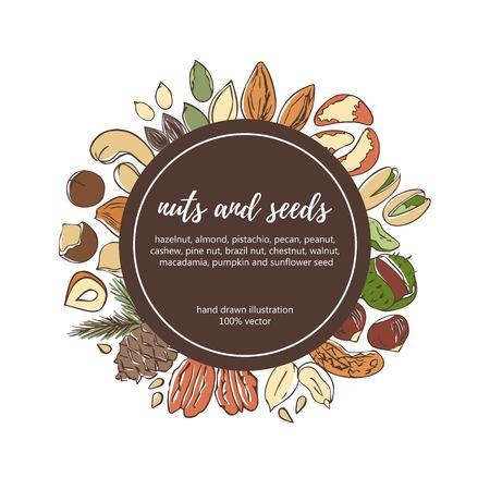 ナッツや種子のベクトル イラスト。手は、黒い円の円で色付きの要素を描画します。カード、フライヤー、ポスター、ラベル テンプレート デザイ