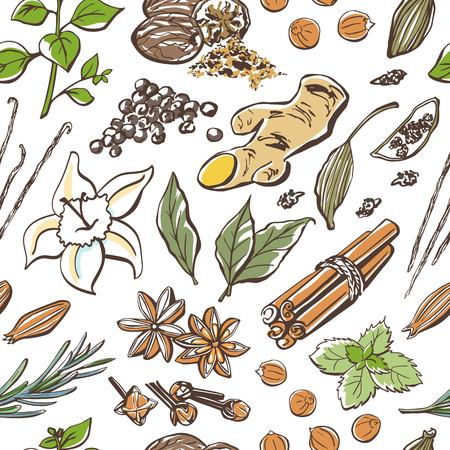 Vector seamless pattern with colored doodles of spices and herbs. Hand drawn elements on white background. Wrapping paper, package, backdrop design. Ilustração