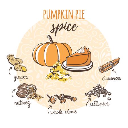 Vector illustration of homemade pumpkin pie spice. Hand drawn powder, cinnamon, cloves, nutmeg. Sketch recipe card