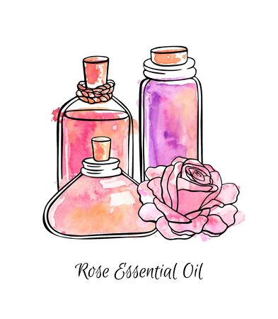 Hand drawn vector illustration of glass jars and bottles with Rose essential oil. Beautiful flasks and flower for aromatherapy. Black ink outline, bright colorful watercolor texture isolated on white.
