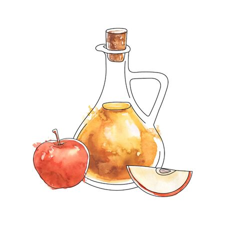 Apple cider vinegar. Glass pitcher with the fermented vinegar and red apples. Black outline and hand drawn watercolor texture. Food illustration in sketch style. Healthy eating and cooking theme.