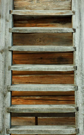 log wall: old wooden ladder leaning against a log wall